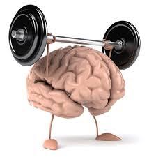 better-brain-function